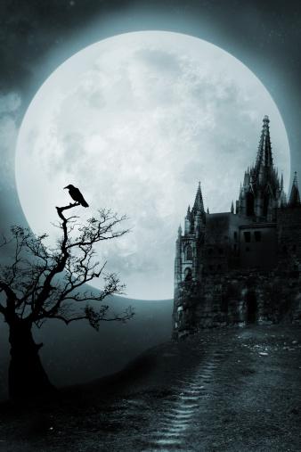 月面「旧宮殿」:スマホ壁紙(9)