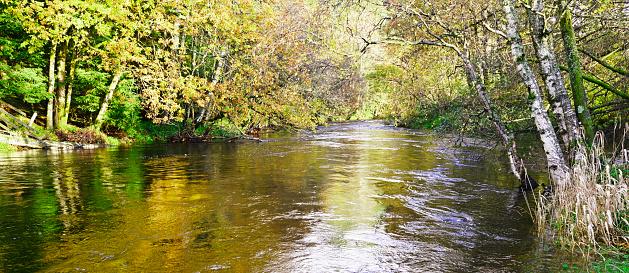 アーン川「Sunlit summer river」:スマホ壁紙(0)