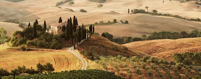 Non-Urban Scene「Classic Tuscany landscape with farmhouse」:スマホ壁紙(11)