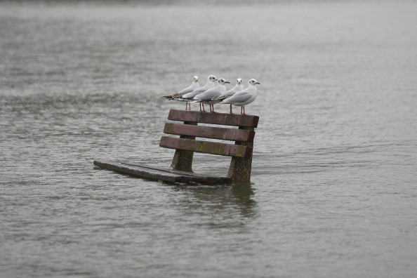 Bench「Pangbourne Suffers Flooding As Thames Water Levels Remain High」:写真・画像(12)[壁紙.com]