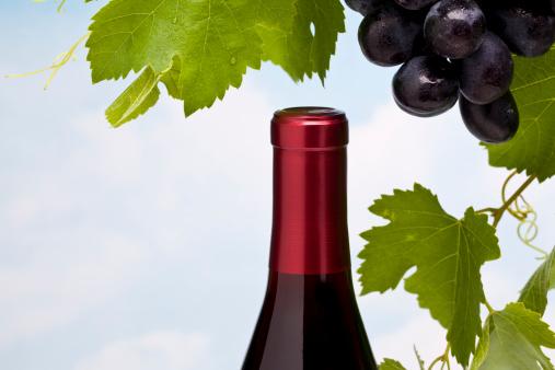 Grape「Wine」:スマホ壁紙(2)