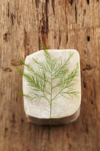 Feng Shui「Spa still life with green fern on bar of soap」:スマホ壁紙(12)