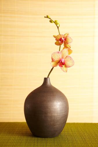 Feng Shui「Spa still life of orchid flower in vase」:スマホ壁紙(8)