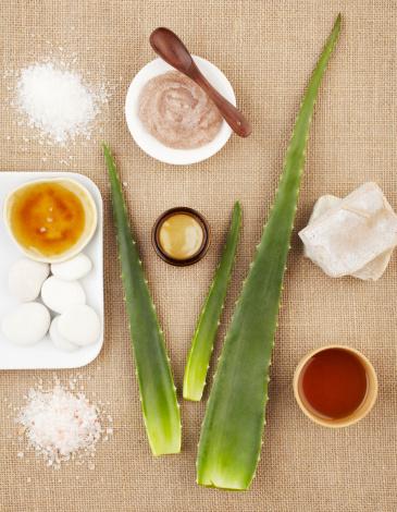 Feng Shui「Spa still life with aloe vera, sugar scrub and soap」:スマホ壁紙(15)