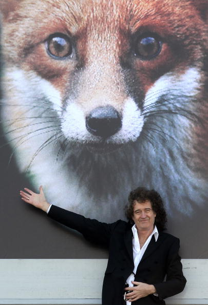 Animals Hunting「Brian May Launches The Save Me Campaign」:写真・画像(6)[壁紙.com]