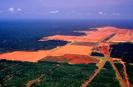 Deforestation「Industry in the Amazon」:スマホ壁紙(11)