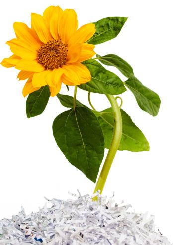 Planting「Recycled」:スマホ壁紙(8)
