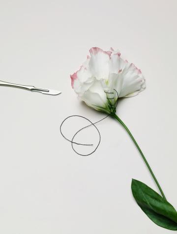 Healing「Flower petals sewn together」:スマホ壁紙(14)