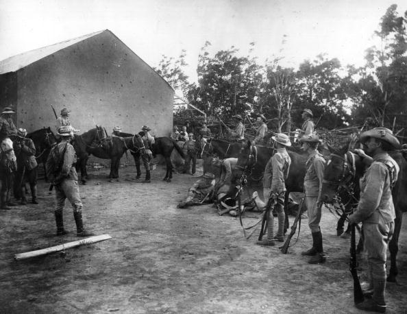 animal「British Camp」:写真・画像(9)[壁紙.com]