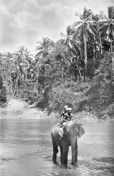 Spencer Arnold Collection「Fording The Kelani」:写真・画像(16)[壁紙.com]