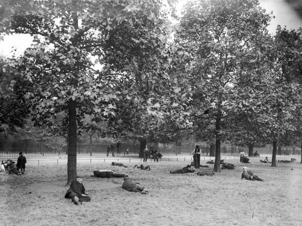 Reinhold Thiele「Park Rest」:写真・画像(8)[壁紙.com]