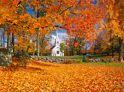 Sugar maple「Autumn In New Hampshire」:スマホ壁紙(15)