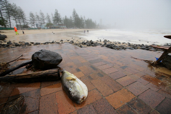 Footpath「Severe Weather And Flash Flooding Hit Southern Queensland」:写真・画像(10)[壁紙.com]