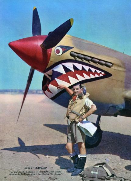 Mode of Transport「Raf Pilot In Libyan Desert」:写真・画像(5)[壁紙.com]