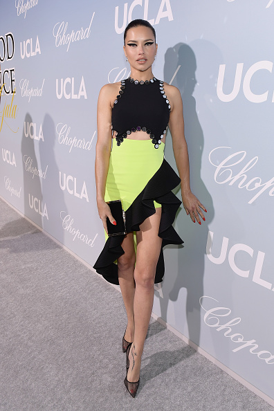 Hollywood - California「UCLA IoES Honors Barbra Streisand And Gisele Bundchen At The 2019 Hollywood For Science Gala」:写真・画像(19)[壁紙.com]