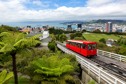 New Zealand「Wellington Cable Car and cityscape, North Island, New Zealand」:スマホ壁紙(7)
