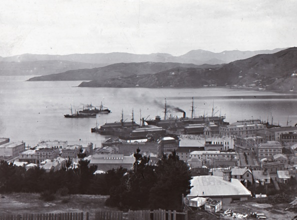 1900-1909「Wellington Harbour」:写真・画像(13)[壁紙.com]