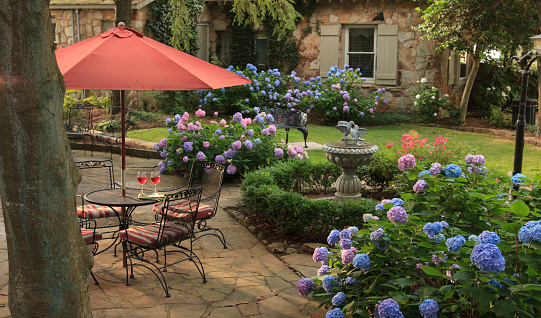 アジサイ「Hydrangeas surrounding patio with table and wine」:スマホ壁紙(11)