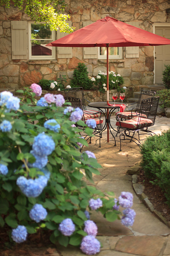 アジサイ「Hydrangeas surrounding patio with table and wine」:スマホ壁紙(14)