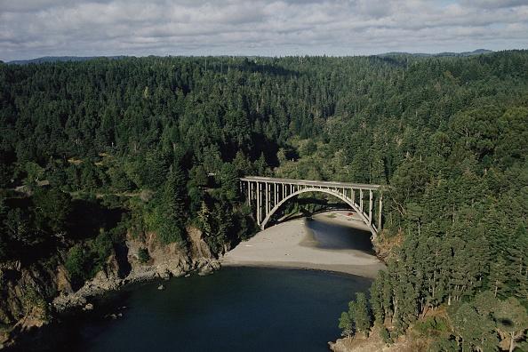 California State Route 1「California's Mendocino County Coastline」:写真・画像(17)[壁紙.com]