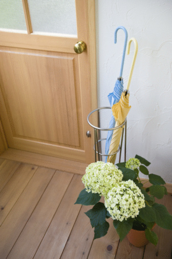 Hydrangea「Umbrella stand and hydrangea in front of door」:スマホ壁紙(4)