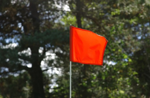 Golf Links「Flag on golf course」:スマホ壁紙(19)