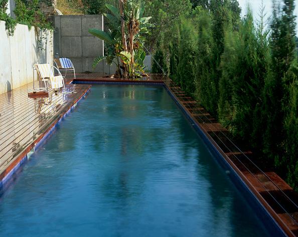 葉・植物「View of a long swimming pool」:写真・画像(19)[壁紙.com]
