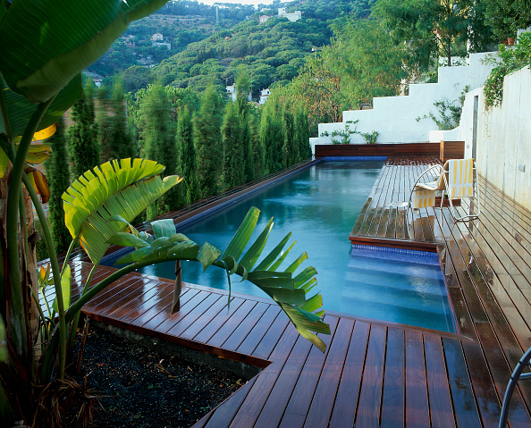 葉・植物「View of a long swimming pool」:写真・画像(3)[壁紙.com]