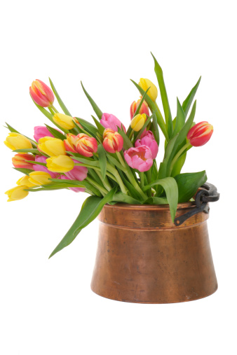 Daffodil「Colorful Tulips in an Antique Copper Pot」:スマホ壁紙(19)
