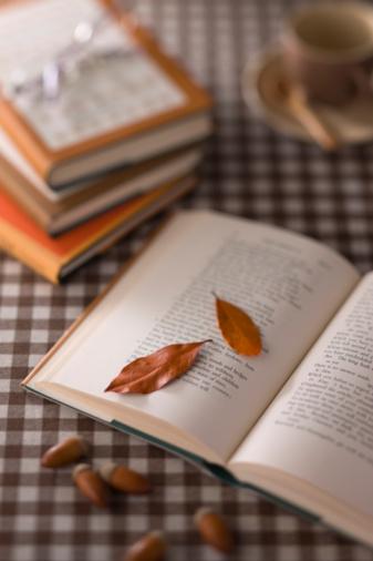 どんぐり セレクティブフォーカス「Leaf, Acorn and Book」:スマホ壁紙(17)