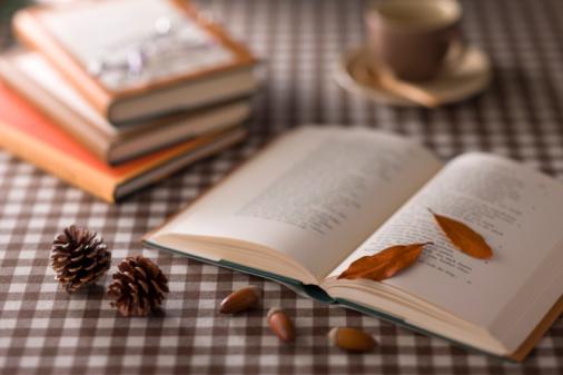どんぐり セレクティブフォーカス「Leaf, Acorn and Book」:スマホ壁紙(19)