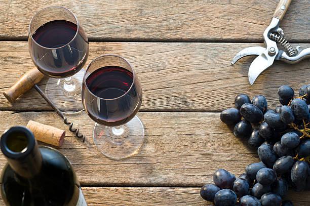 Vineyard Harvest:スマホ壁紙(壁紙.com)