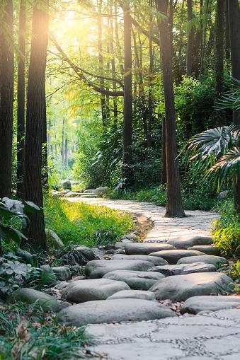 Fairy tale「Stone road in magic forest leads to haze of light」:スマホ壁紙(16)