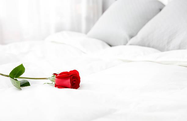 Bright White Bedroom with Single Rose, Copy Space:スマホ壁紙(壁紙.com)