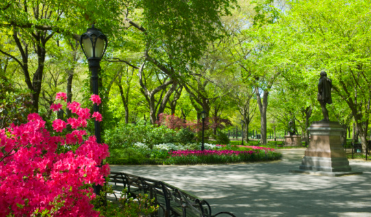Footpath「Central Park New York City」:スマホ壁紙(14)