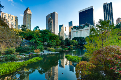 Central Park - Manhattan「Central Park in New York City」:スマホ壁紙(10)