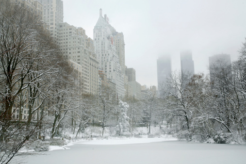 Snow scene「セントラルパークの冬のワンダーランド」:スマホ壁紙(8)