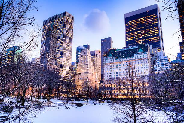 Central Park in winter:スマホ壁紙(壁紙.com)