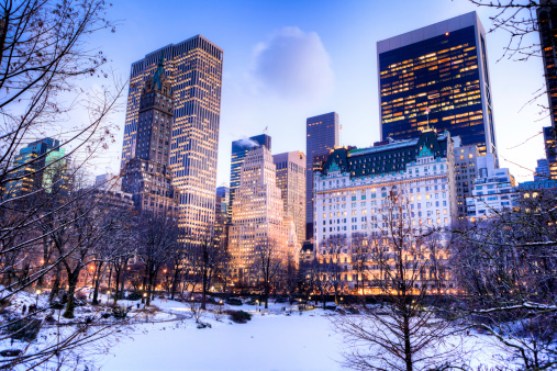 Auto Post Production Filter「Central Park in winter」:スマホ壁紙(3)