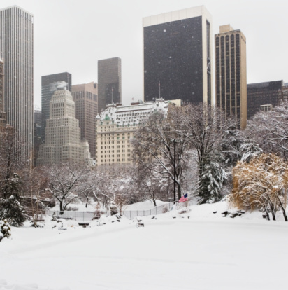 Central Park - Manhattan「Central Park in winter」:スマホ壁紙(19)