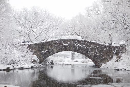 吹雪「冬のセントラルパーク」:スマホ壁紙(4)
