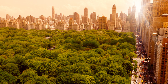 Twilight「Central Park at Sunset」:スマホ壁紙(18)