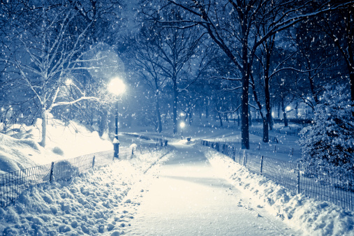 Alley「Central park by night during snow storm」:スマホ壁紙(13)