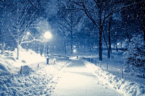 マンハッタン セントラルパーク「セントラルパークの中に夜の雪の嵐」:スマホ壁紙(17)