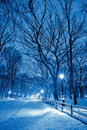 マンハッタン セントラルパーク「セントラルパークの中に夜の雪の嵐」:スマホ壁紙(12)