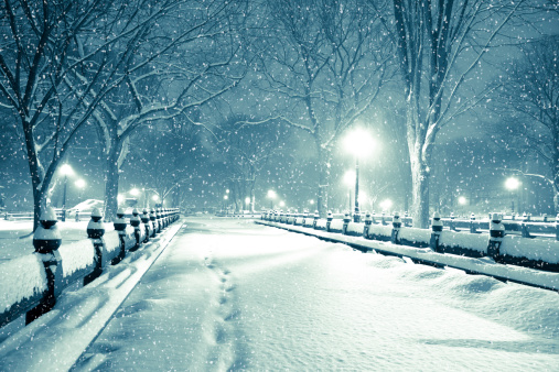 Park Bench「Central park by night during snow storm」:スマホ壁紙(15)