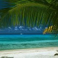 Ki Ora beach壁紙の画像(壁紙.com)