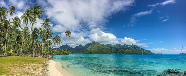 French Overseas Territory「Taahiamanu Beach panorama view」:スマホ壁紙(10)