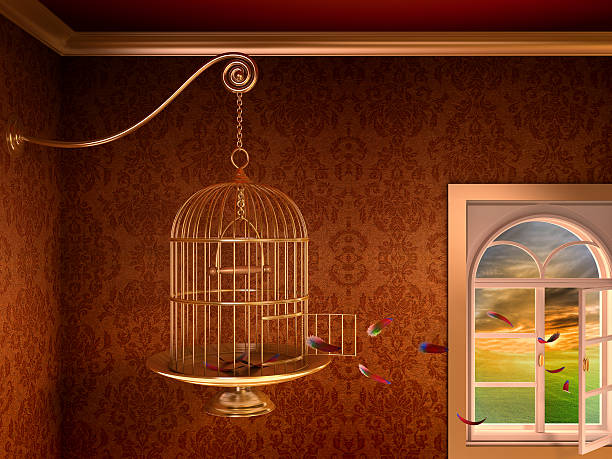 Empty birdcage:スマホ壁紙(壁紙.com)