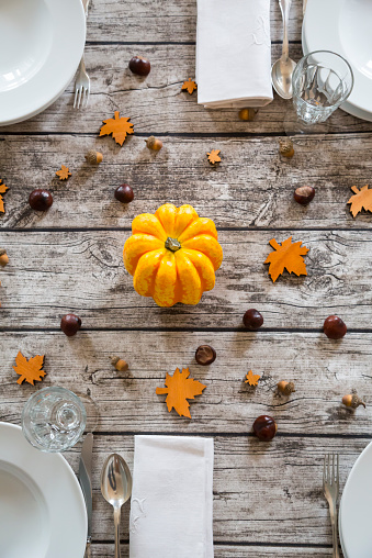 chestnut「Autumnal laid table with yellow pumpkin, chestnuts and acorns」:スマホ壁紙(6)